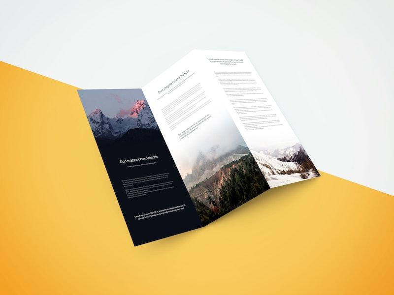 Tri Fold Brochure Showcase Mockup preview